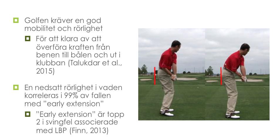 Golfföreläsning våren 2016!